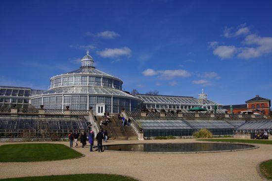 Victorianske Palmehus i Botanisk Have